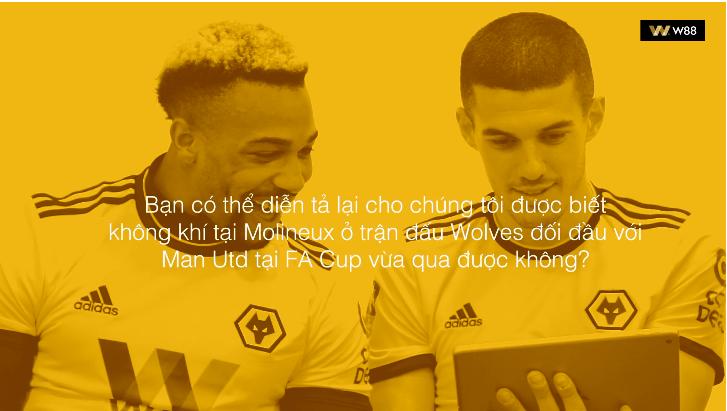 Wolves nói gì sau khi hạ gục 2 đội bóng huyền thoại Liverpool và Man Utd?